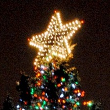 Medium 200 christmas tree 1