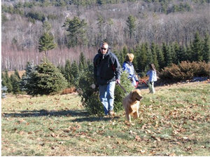 Photo courtesy of Forsters Christmas Tree Farm  Gift Shoppe