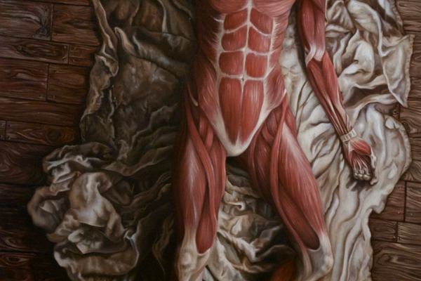 Wiedemann's study of anatomy figures prominently in some of her work.
