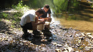 Through its many internship programs the Land Conservancy for Southern Chester County gives interns actual field experience