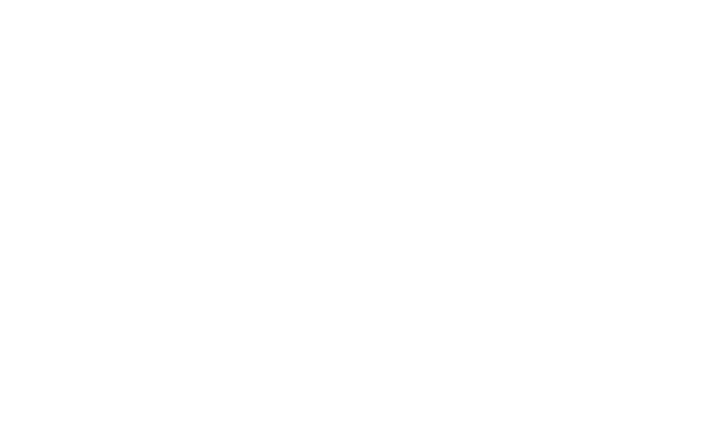 Vins logo full inside