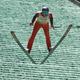 Summer ski jumping