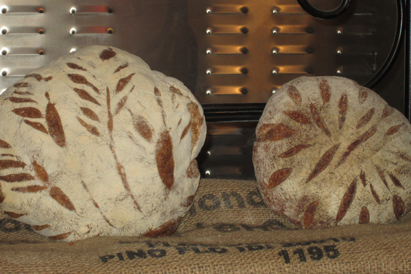 Two of Silverman's bread loaves, with depictions of wheat stenciled onto the tops in flour.