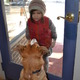Blue the official dog of the newly-opened State  Union in Kennett Square admires a young passerby