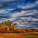 Winter Approaches by Duane Bender, 3rd place, Adult Advanced, Nature Scenics