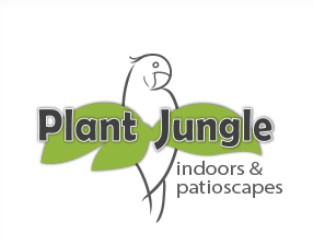 Medium plant 20jungle 20logo