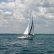 Thumb sailboat in the ocean wallpaper  yvt2