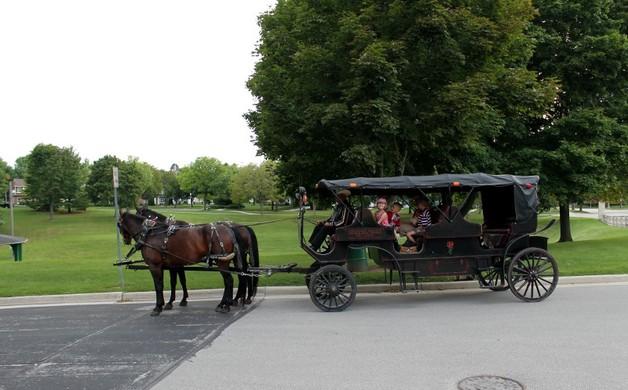 Carriage Ride Bulitz Carriage Rides (2)