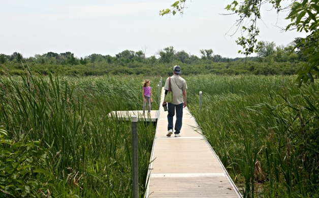 Don't miss the boardwalk that goes straight through the bog!