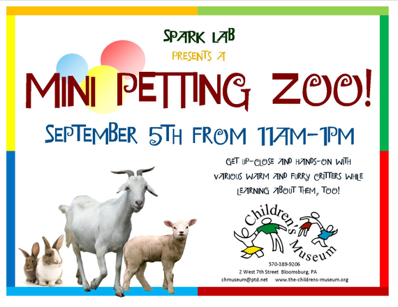 Mini 20petting 20zoo 20flyer