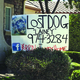 One of Lainey's lost dog signs in a Clovis resident's front yard.