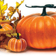 Halloween Ideas for the Home and Garden - Sep 30 2015 0237PM