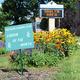Shaler Area Middle School Garden Named Garden of the Month