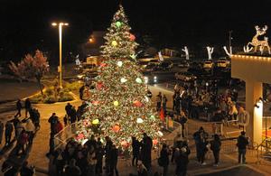 Medium christmas 20tree 20lighting 20ceremony