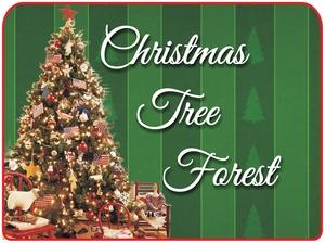 Medium christmas 20tree 20forest yoakum 20heritage 20museum 20  20yoakum 202015