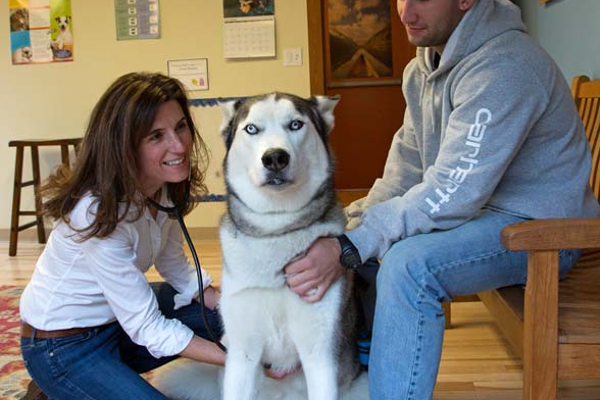 The comfortable exam room with natural elements seems to make pets more at ease, if not overjoyed, during visits. Dr. Lesser listens to Echo's heart with Logan Scelza.