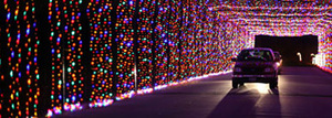 Prairie Lights 2015 - start Nov 26 2015 0600PM