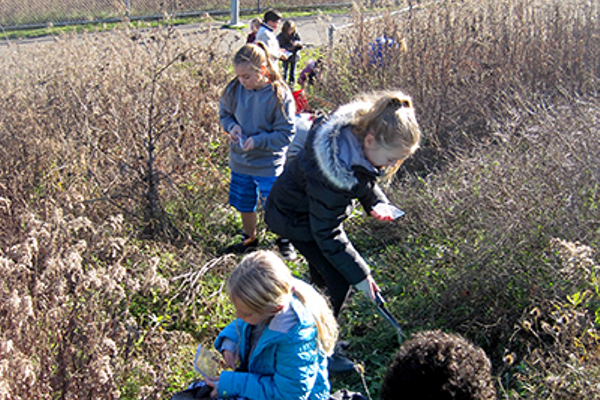 Haine Students Plant Food for Butterflies