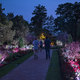 The popular Nightscape sound and light show will return to Longwood Gardens in 2016