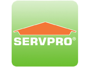 Official 20servpro 20profile 20picture