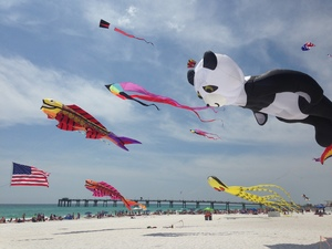 Medium 2015fwbkitefest 02