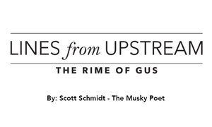 Lines from Upstream - The Rime Of Gus - Jan 27 2016 0318PM