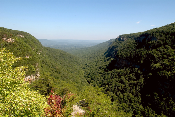 Cloudland Canyon Overlook. Photo courtesy of Georgia Department of Natural Resources.