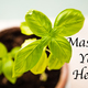Master Your Herbs - Apr 05 2016 0308PM