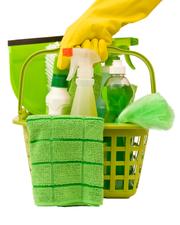 Medium green cleaning kit