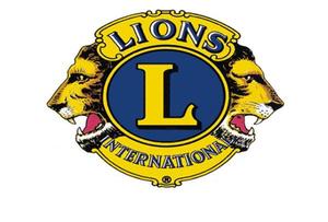 Medium lionsoh