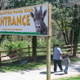 Jimmy welcomes guests at the entrance to Plumpton Park Zoo.