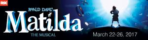 Medium matilda web banner graphic 650x175