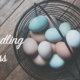Get Certified to Sell Your Backyard Eggs - Jul 05 2016 0300PM
