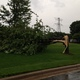 Trees at the Maple Grove Government Center were no match for 60 mile per hour winds during the July 5, 2016 storm in Maple Grove. (photo by Doug Erlien)