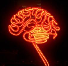 Medium neon brain4eb751