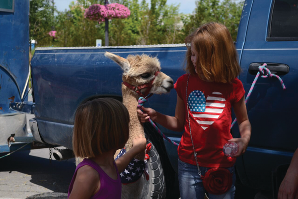 Live animals are available at the petting zoo during the Holladay Famers Market. —Kim Roach