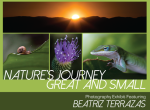 Natures Journey Great and Small  Photography Exhibit - start Sep 09 2016 0630PM