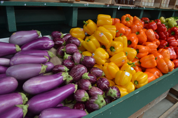 At Money's, rows of fresh fruits and vegetables burst with color.
