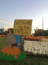 Photo courtesy of The Patch at Southlake on Facebook httpswwwfacebookcomthepatchatsouthlake