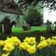Isle of Wight Churchyard