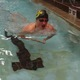 Junior Seth Roundy swims the 200-yard individual medley on Nov. 17 at the Marv Jensen Recreation Center. (Travis Barton/City Journals)