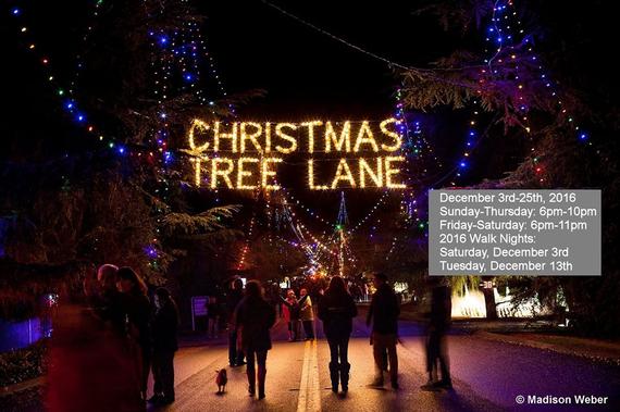 Christmas Tree Lane Fresno