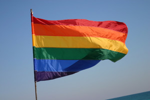 Medium rainbow 20flag