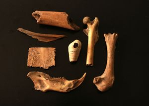 Medium 01 20archaeology