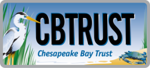 Medium cbtrust logo