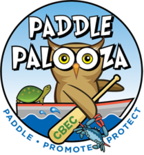 Medium paddlepalooza logo 278x300