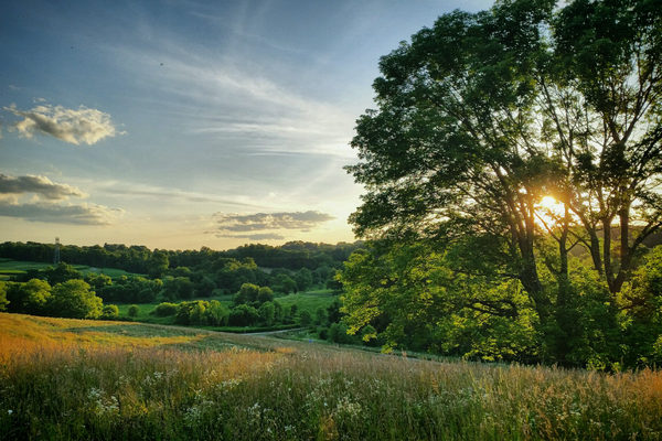(Photo by Nicholas Rohr)  Stroud Preserve is a beautiful property of more than 500 acres.