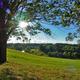 (Simone Collins Landscape Architecture/Geoff Creary) The picturesque Stroud Preserve.