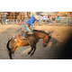 Bluffdale will start its summer festivities off with a rodeo. (Bluffdale City)