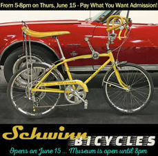 Medium schwinn 300x295